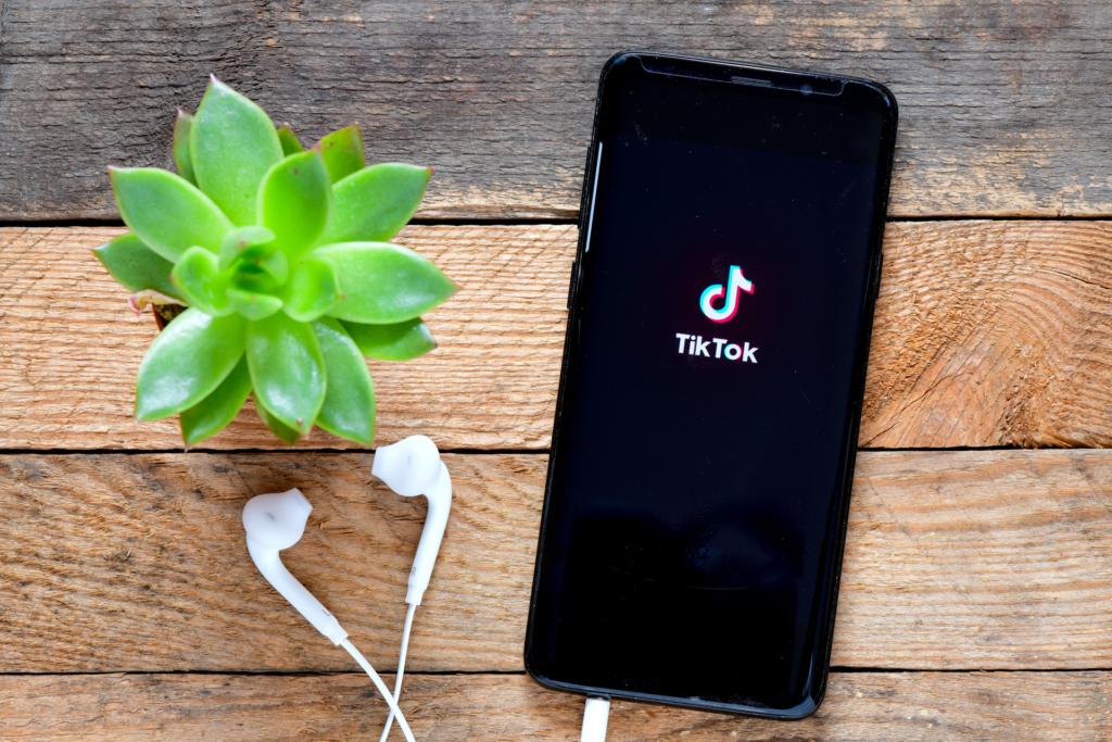 Téléphone mobile connecté sur l'application TikTok avec plante verte et écouteurs. Vue du dessus.